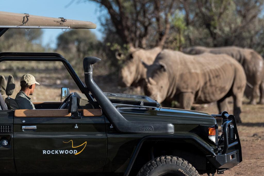 Rockwood ranger in jeep protecting rhino