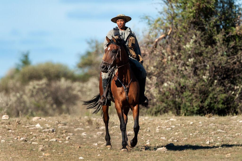 Rockwood ranger on horseguard