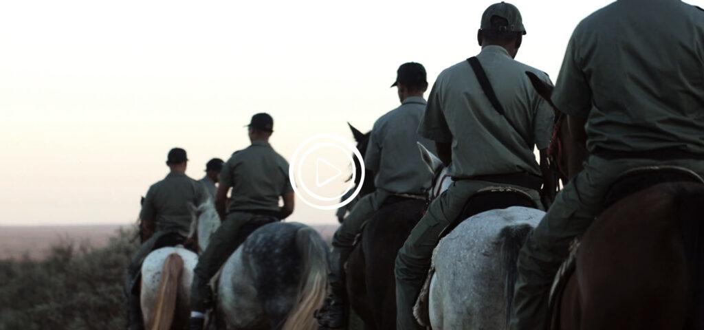 rangers riding horses